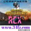 RCX辅助-绝地求生辅助官方网站【雷达透视】